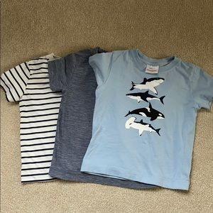 Set of 3 Hanna Anderson Boys Tees Size 90 (3T)